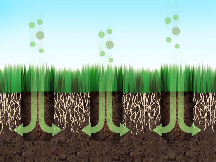 ARIEGGIATURA GIARDINO  Un giardino rigoglioso e florido richiede la giusta quantità di penetrazione di acqua e aria per consentire ai nutrienti vitali di entrare nel suolo. I giardini costituiti da terra dura e compatta non consentono a ossigeno, acqua e ...
