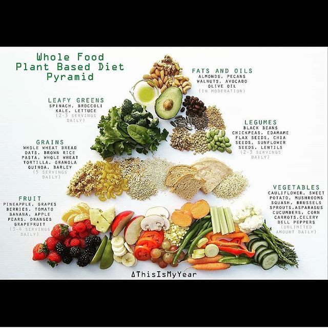 plant based diet on the go