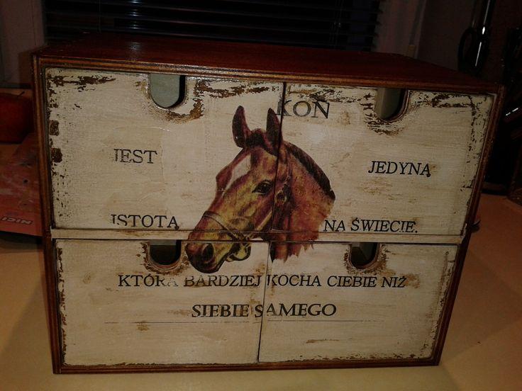 organizer dla miłośnika koni