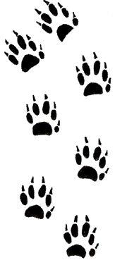 Ferret Tattoo Designs | Services for Ferrets