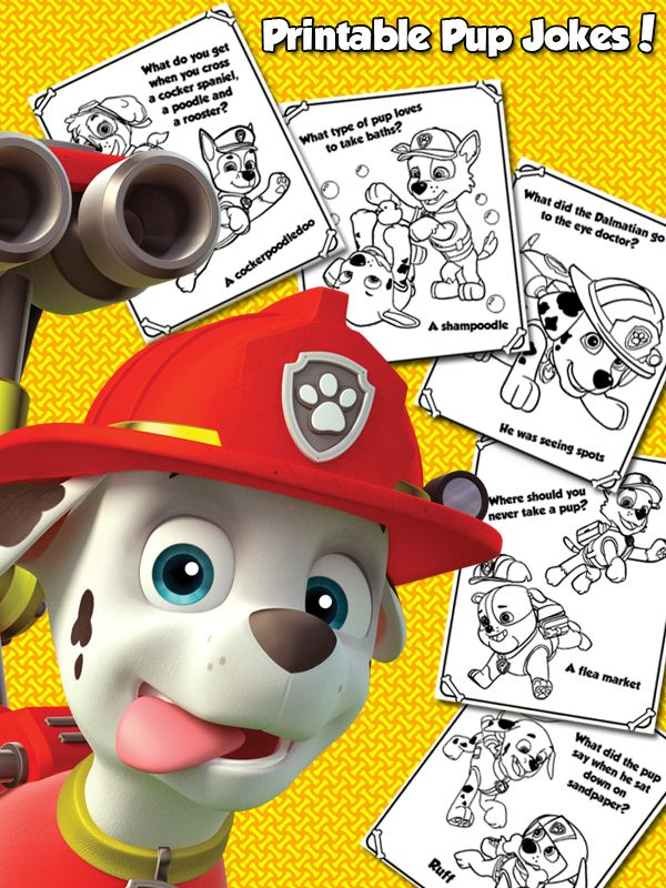17 Best Images About Paw Patrol On Pinterest Nick Jr
