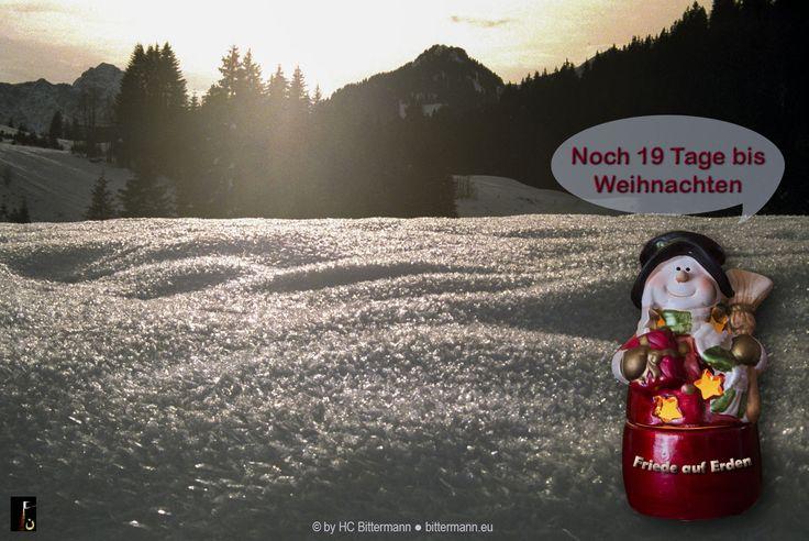 Die Weihnachtsgeschichte:  'Es begab sich aber in jenen Tagen, daß ein Befehl ausging vom Kaiser Augustus, daß alle Welt sich sollte schätzen lassen. Diese Schatzung war die erste und geschah, als Kyrenius Landpfleger in Syrien war. '  Lukas 2:1-2 https://www.bible.com/bible/158/LUK.2.1-2  Jeden Tag ein Vers von der Geburt Jesus  #advent #weihnachten #frieden #botschafterdesherrn