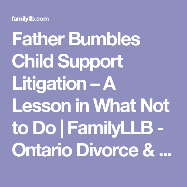 """Father Bumbles Child Support Litigation – A Lesson in What Not to Do  