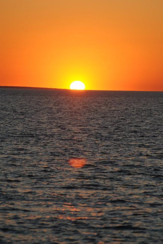 Setting of the sun Darwin