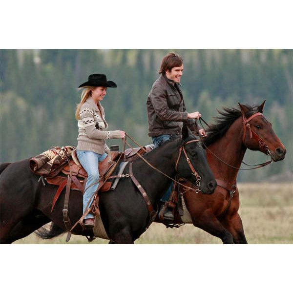 Heartland - CBC Television ❤ liked on Polyvore featuring heartland and horses