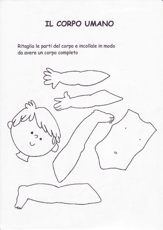 Risultati immagini per schede didattiche il corpo