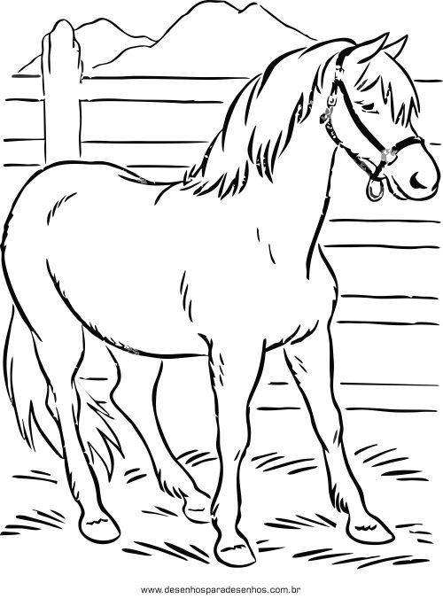 Resultado de imagem para desenhos para colorir de animais