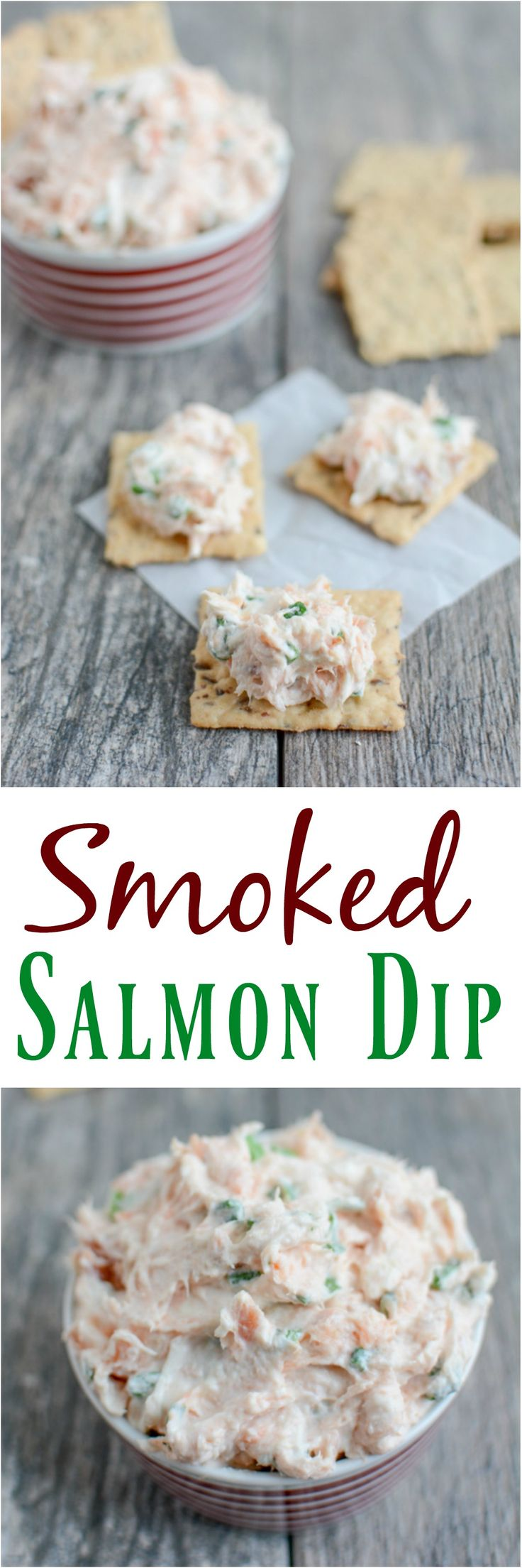 This Easy Smoked Salmon Dip recipe is the perfect appetizer for your next party. It's quick, easy and full of flavor and also makes a great snack!