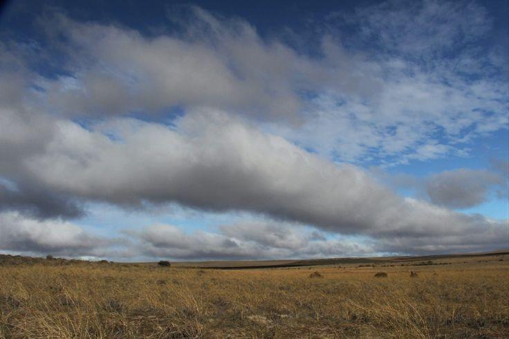 Península Valdés, Patagônia Argentina 2017
