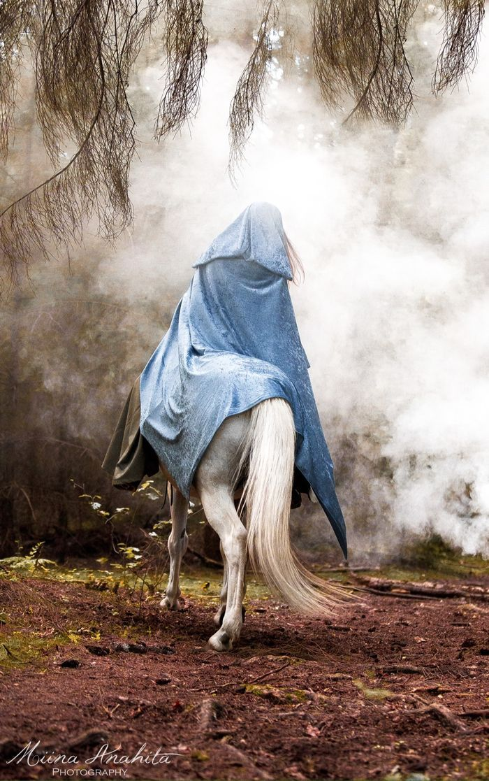 The way was foggy, but her instincts told her it wouldn't be long now until she found the cabin. Her powerful mustang was tired, and took slowly plodded on. She shivered, thankful for her cloak. Apprehension rose in her. What if that if the rumors were even partially true? What if the legends were myths?