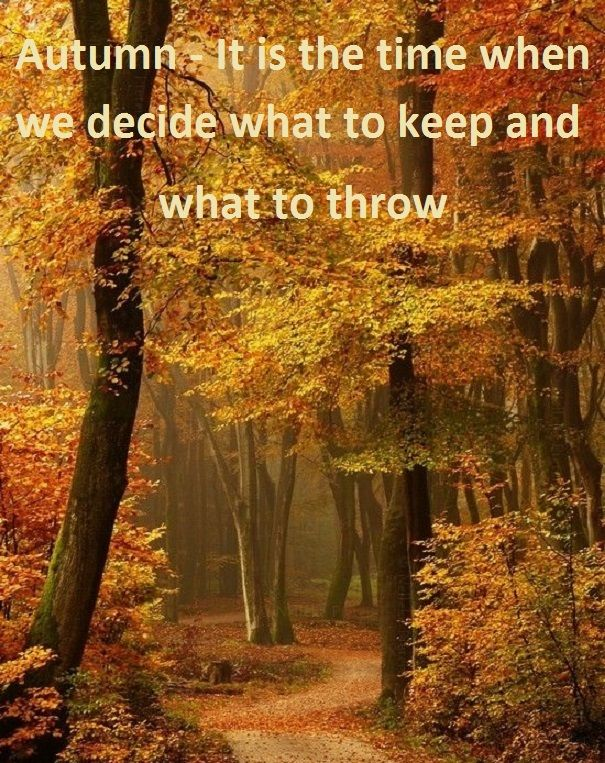 Autumn - It is the time when we decide what to keep and what to throw...