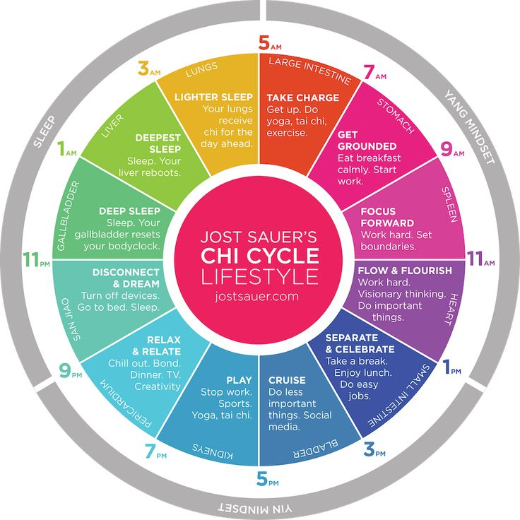 24 Hour Chi Cycle Lifestyle Transforms Lives