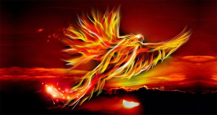 Phoenix aus Feuer