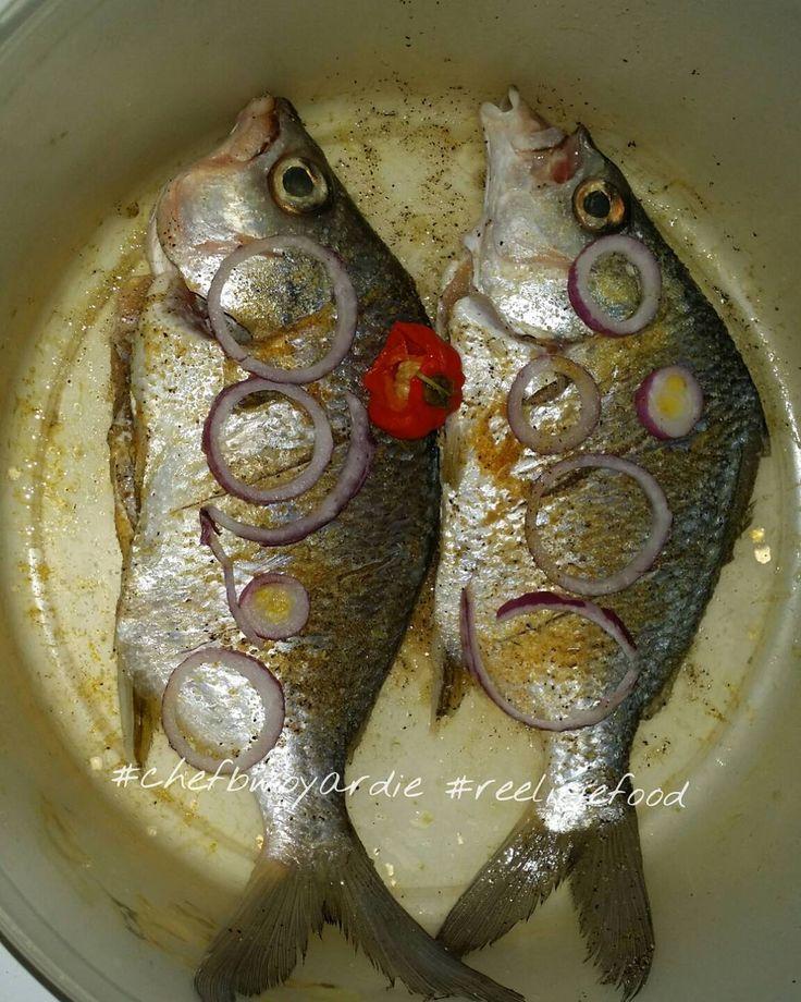 Prepare to meet your cooker. These #mojarra (WRONGLY CALLED #sandperch ) are pretty #tasty #escovitchfish #yummy  #freshcaughtnotstorebought #fishfry #fish #fishporn #food #chefbwoyardie #reeliriefood #foodgasm #foodstagram #foodie #foodporn #cheflife #homemade #homecooking #jamaicanfood #Jamaican #dinner #foodpicoftheday  #fishing #fisherman #realtor #chef #reeliriefishing by reel_irie_fishing