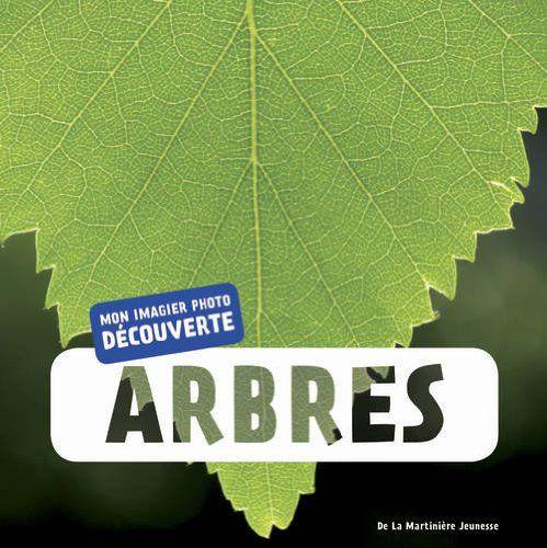 17 meilleures id es propos de reconnaitre les arbres sur pinterest feuillus guirlande - Reconnaitre les arbres par leur tronc ...