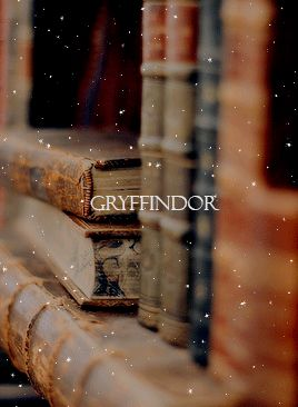 Gryffindor- Aesthetic
