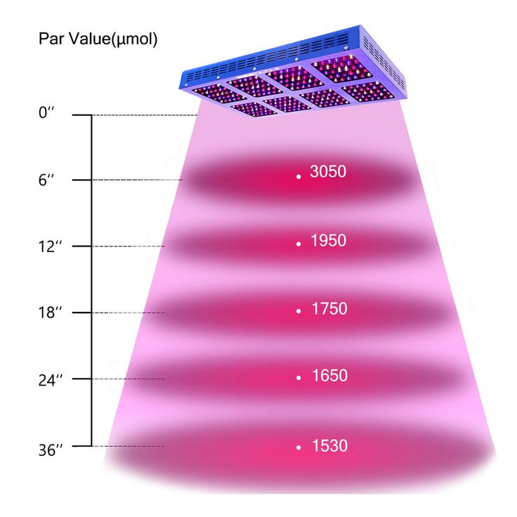 this 1200W LED grow light, full spectrum, high par value, with growth&bloom switches, IR help cell devision.