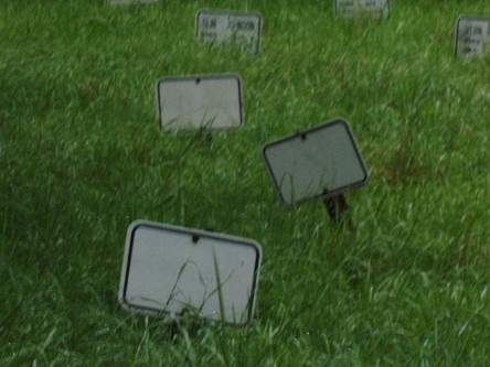 Inmates Graves Blank Markers Whitegate Cemetery