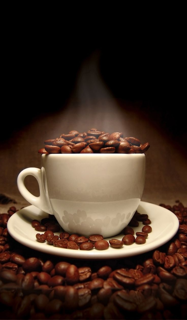 2 Mix Fitne Diet Instant Coffee Slimming Weight Control Cellulite Fat Burn (2x5 sticks)