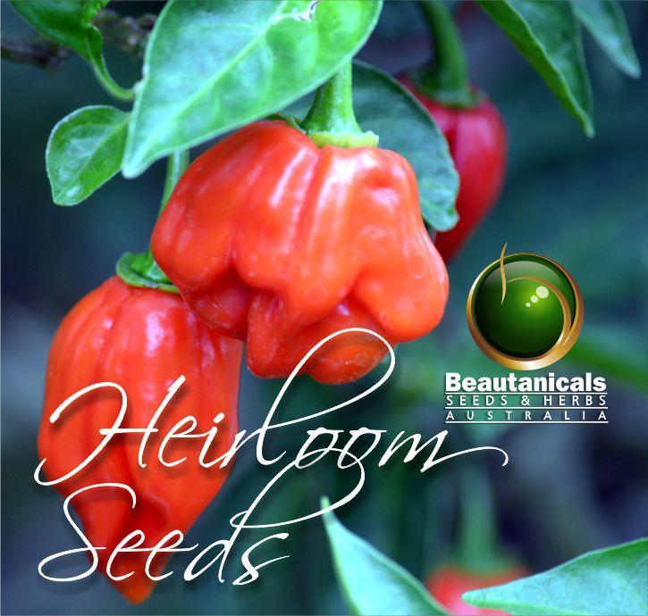 Heirloom Seeds Australia
