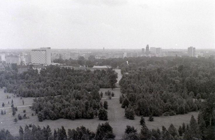 Tiergarten von der Siegessäule aus 1962