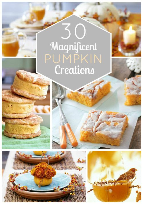 30 magnificent pumpkin creations...I'm more interested in the ones that involve eating pumpkin, but there are some cute ideas on here...: Pumpkin Ideas, 30 Magnificent, Pumpkin Creations, Fall Treats, Creations Fall, Magnificent Pumpkin, 30 Pumpkin, Pumpkin Food