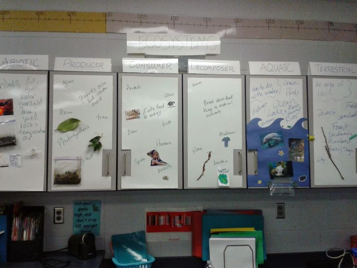 Teaching and Learning in Community: Interactive Word Walls. She used laminated white posterboard over cupboard doors as a word wall.