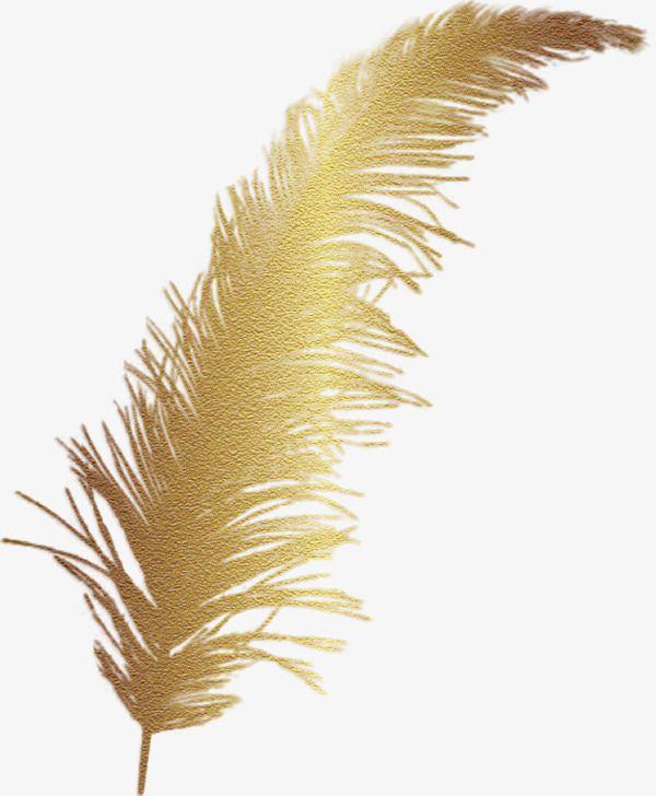 Pluma De Oro De Dibujos Animados Clipart De Dibujos Animados Dibujos Pintados A Mano Dorado Png Y Psd Para Descargar Gratis Pngtree Vintage Printables Free Vintage Printables Pink Feathers