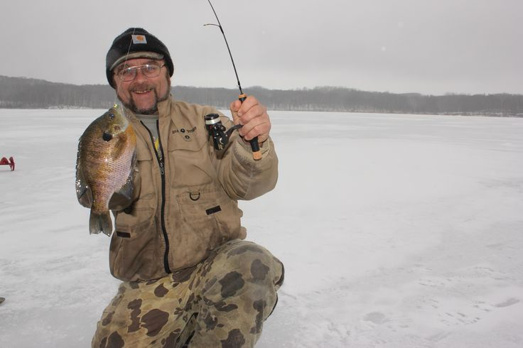 17 best images about weekly phisching posts on pinterest for Ice fishing for catfish