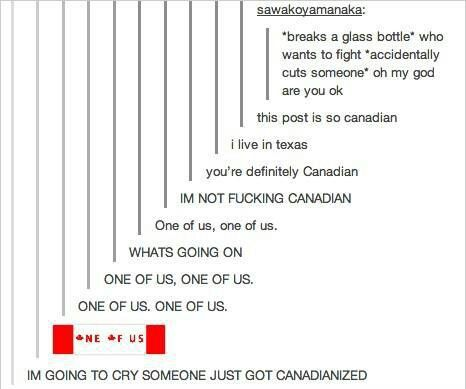 is being Canadian really a cult, well I'm screwed