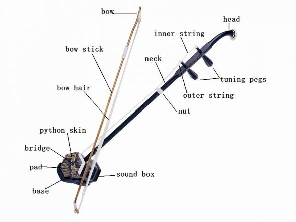 Is it possible to learn Erhu without any background in music?