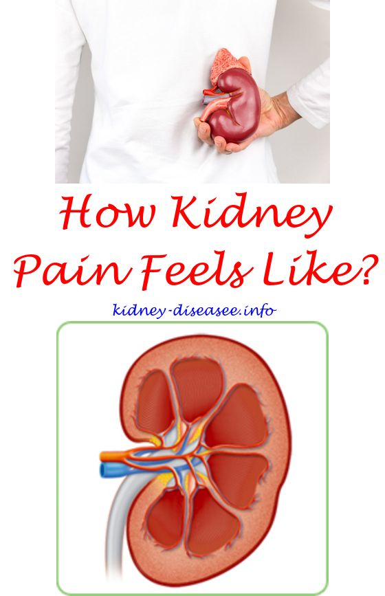 what are kidney failure stages - what is the treatment for kidney infection.kidney infection and sepsis 4697804538