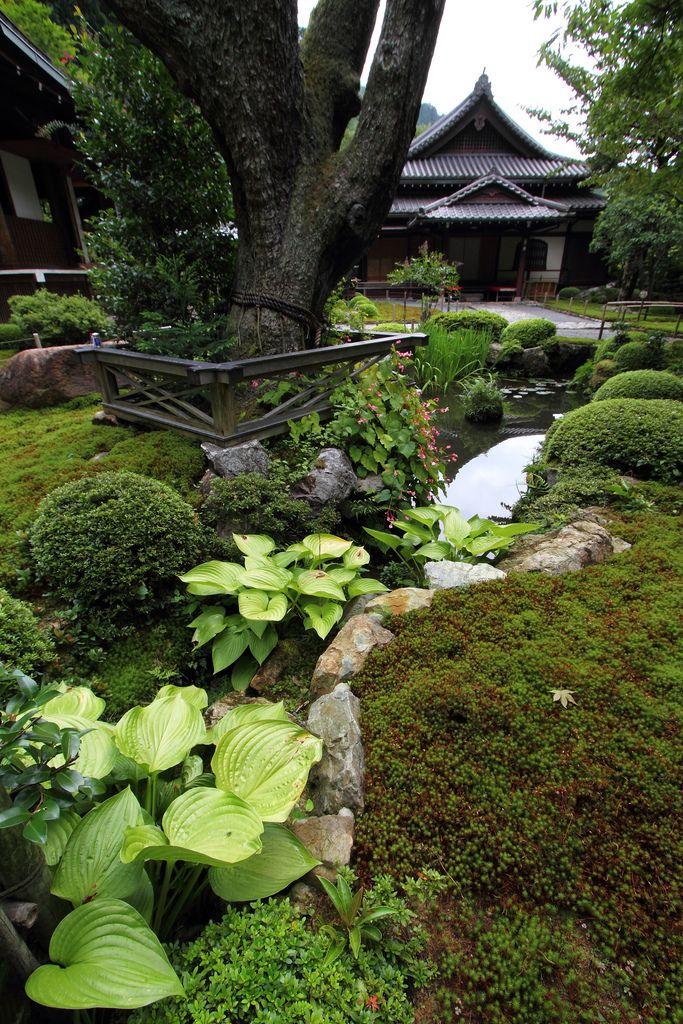 Garden Jakko-in temple, Oohara area in Kyoto