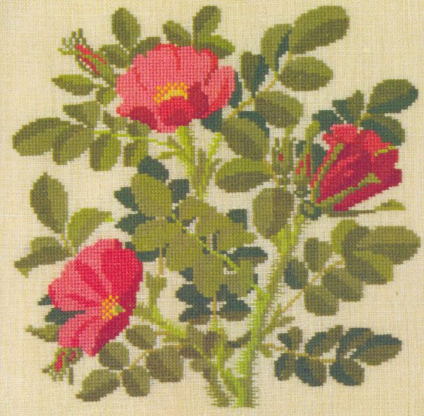 Gallery.ru / Фото #5 - Flowers and Berries in Cross Stitch - Mosca