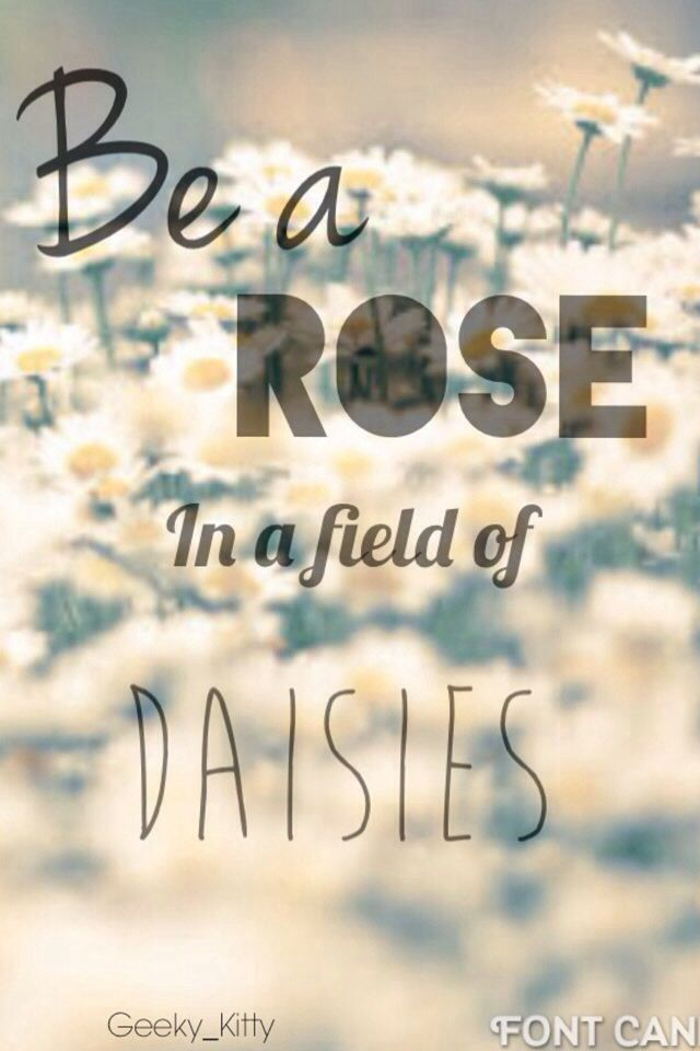 Best 25 Daisy Quotes Ideas On Pinterest Gypsy Life