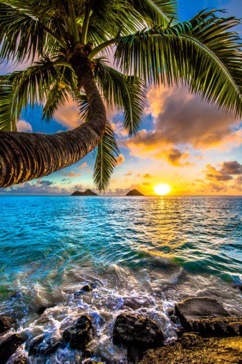 Epic sunrise in Kailua at the famous Lanikai Beach