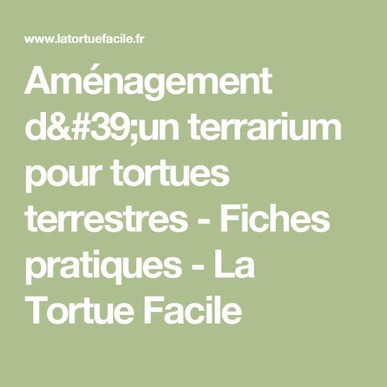 Aménagement d'un terrarium pour tortues terrestres - Fiches pratiques - La Tortue Facile