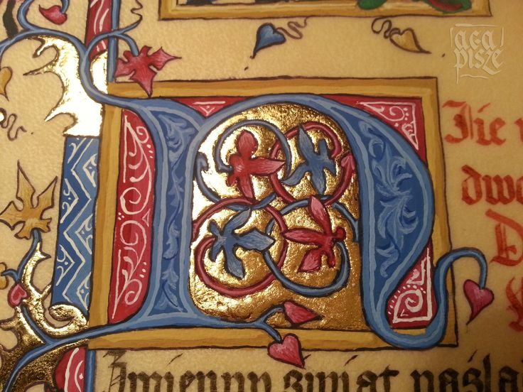 Initial N. Gold and gouache. Made by AgaPisze. #calligraphy #initial #ghotic #textura #manuscript