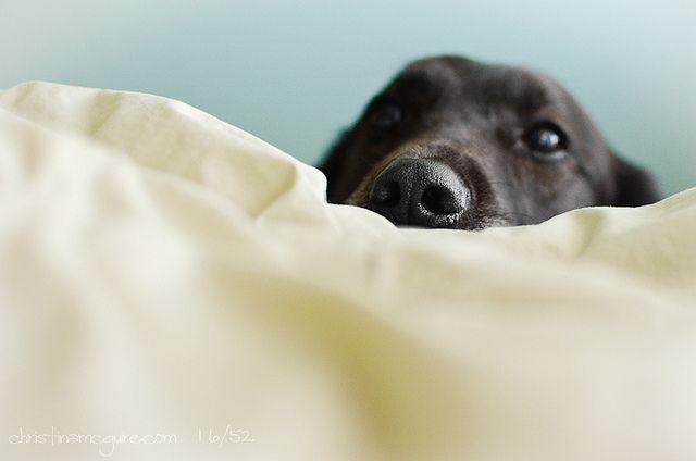 it's morning time! aren't you awake yet?