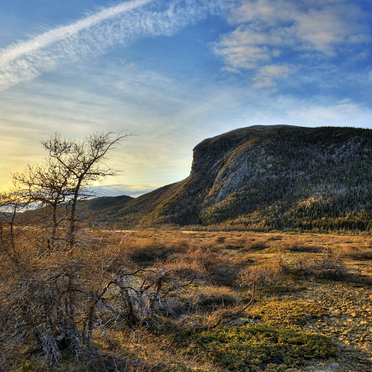 Newfoundland - tablelands.... believe it or not this is one amazing place to see... i will never forget it....
