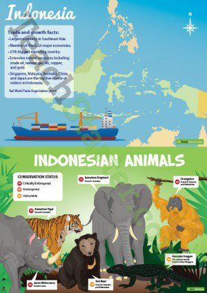 Indonesia Profile Poster Pack
