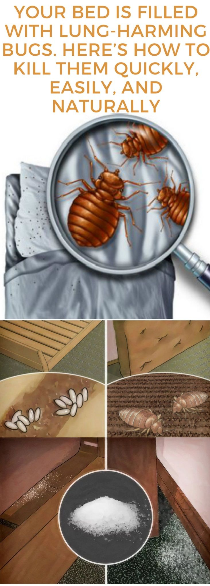 Your Bed Is Filled With Lung-Harming Bugs. Here's How To Kill Them Quickly, Easily, And Naturally
