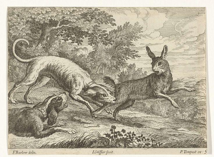 Jan Griffier (I) | Jacht op een haas, Jan Griffier (I), Pierce Tempest, 1680 - 1694 | Twee honden jagen op een haas. Deze prent maakt deel uit van een serie van tien prenten met verschillende dieren.