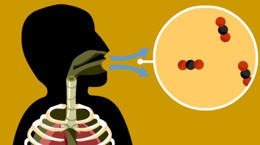 Cette technique de respiration japonaise vous aidera à perdre du poids