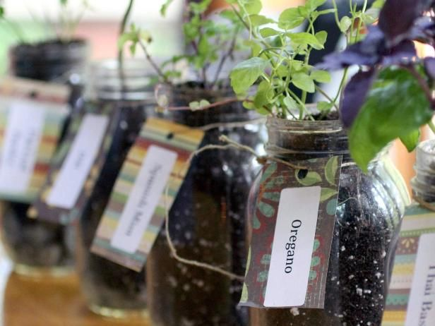 My next project! Step-by-step instructions for growing a Mason jar herb garden on HGTV Gardens.