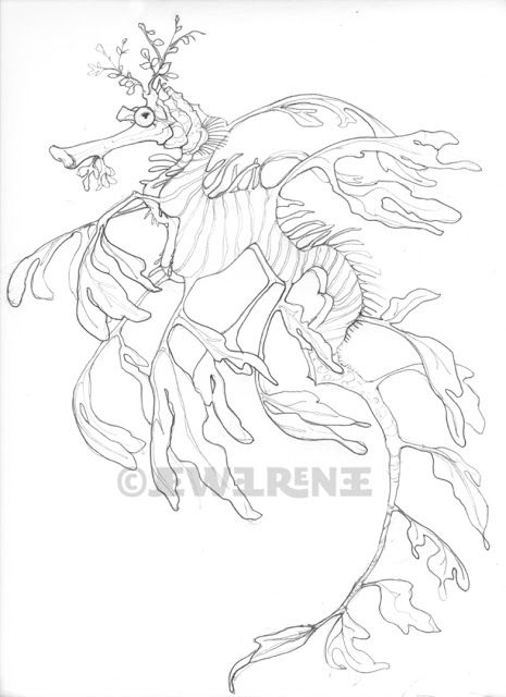 ocean dragon coloring pages - photo#7