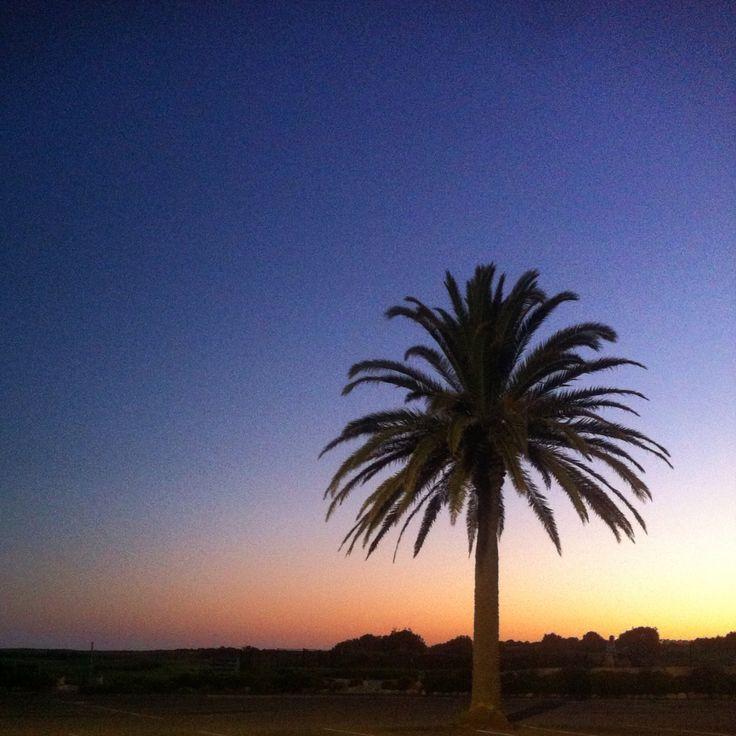 Collaroy beach, NSW, Australia