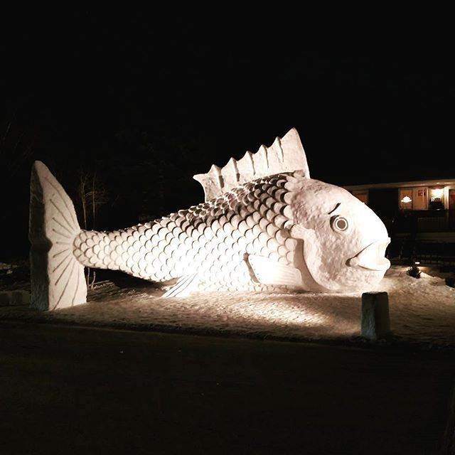 What? Haven't you seen a giant snow fish before?  #winter #snow #ice #snowart #snowsculpture #minnesota #mn #fish #snowfish #giantfish #bigfish
