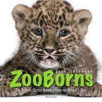 ZooBorns - webside med dejlige billeder og masser af viden om dyreunger i zoologiske haver verden rundt