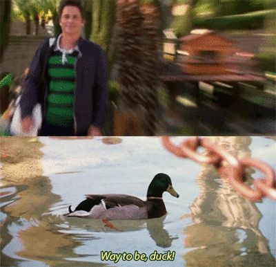 """""""Way to be, duck."""" - Chris Traeger from Parks and Rec (gif)"""